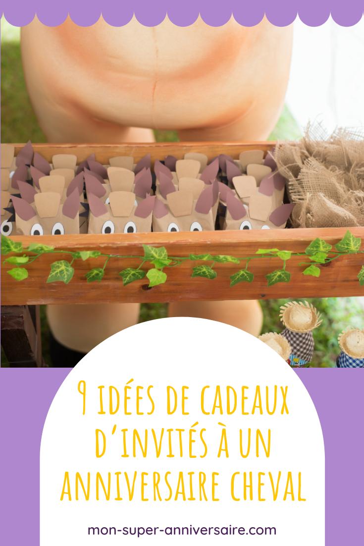 Découvre 9 idées-cadeaux pour invités à un anniversaire cheval. Les enfants vont adorer notre sélection de petits jouets et pochettes cadeaux !